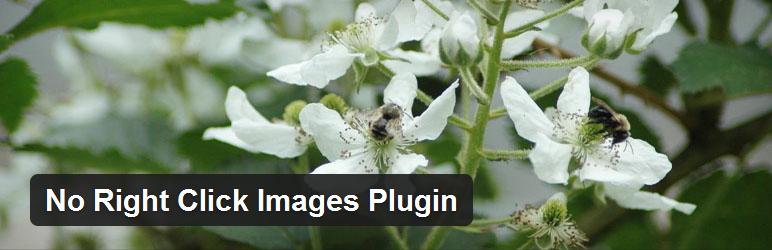 plugin_no_click_on_photos
