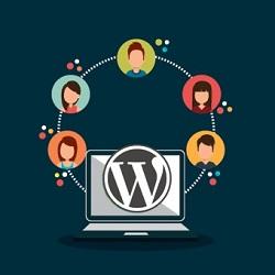۵ افزونه کاربردی برای ایجاد رابط کاربری حرفه ای در وردپرس
