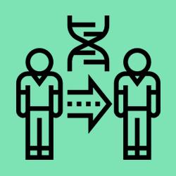 چگونگی راه اندازی آسان نسخه کلون از سایت وردپرسی در هاست اشتراکی