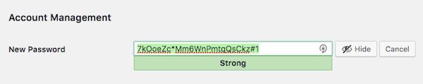 امنیت رمز عبور وردپرس