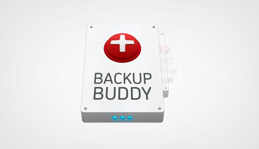 افزونه حرفهای وردپرس BackupBuddy