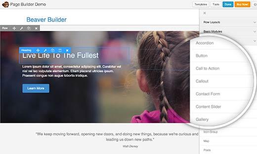افزونه حرفهای وردپرس Beaver Builder