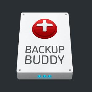 افزونه حرفه ای backupbuddy – پشتیبان گیری حرفه ای از سایت وردپرسی – نسخه ۸٫۳٫۵٫۰